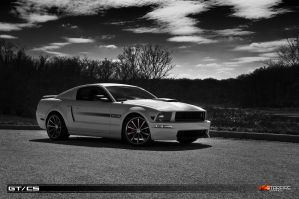 2008 Mustang GTCS by star-fire