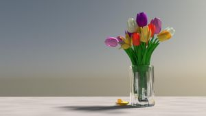 Tulips mixed colors by nad451