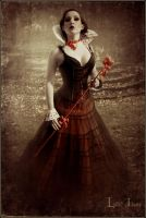 the heart queen by LilifIlane