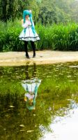Vocaloid - Golden Reflection by Taymeho