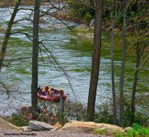 Ohiopyle State Park 6 by GlassHouse-1