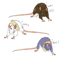 rat official character adoptables   (bids closed) by mechanicalmasochist