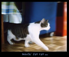 da movin fat cat by ankin