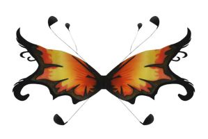 Orange and Black Wings by chamberstock