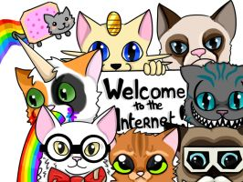 Welcome to the internet. Follow me by Skyechu