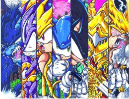 sonic 7 by trunks24