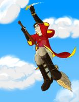commission - quidditch by Veester