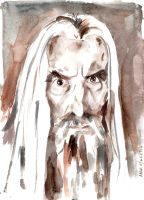 Saruman by AnnAshley