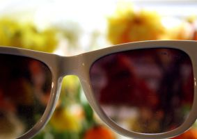Through Chrysanthemum Tinted Glasses by SunnyStereoSound