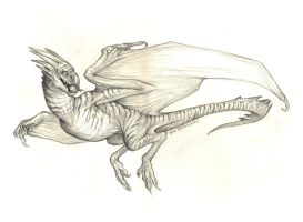 Wyvern Commish by KatePfeilschiefter