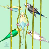 The Great Budgie Escape by DestroyahDes