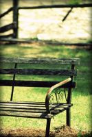 Waiting with patience by jenmarie123