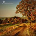 autumn tales along this road.. by Artemisia-dream