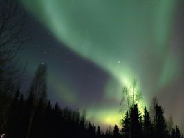 Aurora Fly-By III by Line-of-Birds