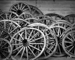 Wagon Wheels by Noko-Photography