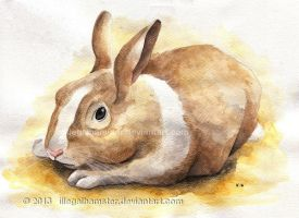 Bunny watercolor commission by IllegalHamsterThe
