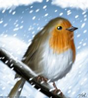 Robin in the snow by Jedgesaurus