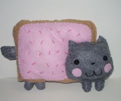 CM: Nyan Cat Plushie by kiddomerriweather