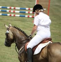 STOCK Showjumping 509 by aussiegal7