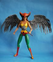 Custom 12 inch Hawkgirl Figure by cusT0M