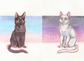 Luna and Artemis by ThePyf
