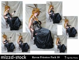 Raven Priestess Pack 10 by mizzd-stock