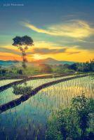 Seen from Jumprit by jd-photowork