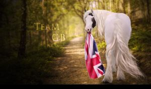 Team GB by snowybell14