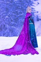 Elsa Coronation by demonic-black-cat