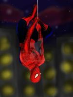 Spider-Man by Shimgu