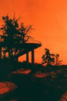 lomography 50-200 redscale by acollins973