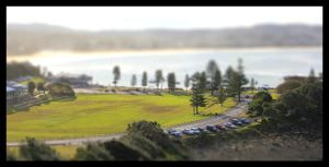 Park Tilt Shift by FlamingAvocado