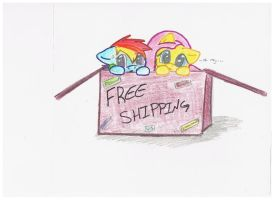 Free Shipping by Echo-Shock