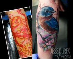 Bluebird Tattoo by jesserix