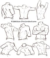 Male Torso Reference Sheet by Kibbitzer