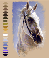 Horse portrait WIP by tonio48