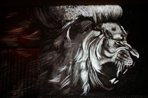Lion graffiti in my village by Idalvi