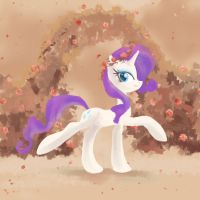 Rose Garden by My-Magic-Dream