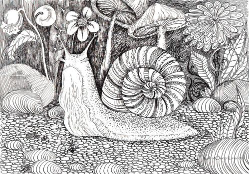 Snail by GreatQueenLina