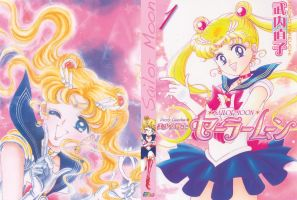 Sailor Moon DVD Cover I by wellknown3th