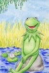 Kermit the Frog by Foxxeh
