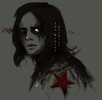 Winter Soldier by stallintheunicow73