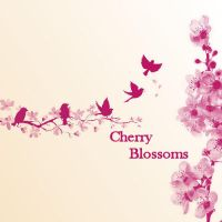 Cherry Blossoms by MelissaAlexandra