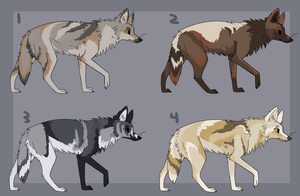 Semi Realistic Wolf Adopts $1 (OPEN) by coIored
