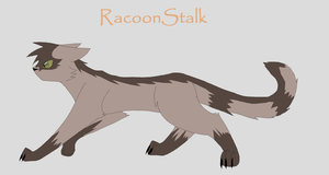 RacoonStalk -ADOPTED- by annathewerewolf