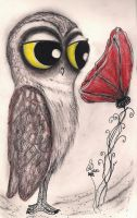A Hoot and the Red Poppy by InkyDreamz