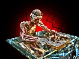 Playing chess by BigA-nt