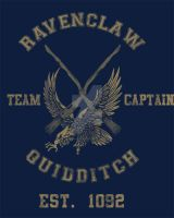 Ravenclaw Quidditch by spacemonkeydr