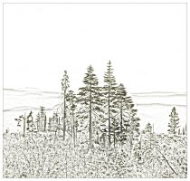 Silver Star View Sketch by jewelslove