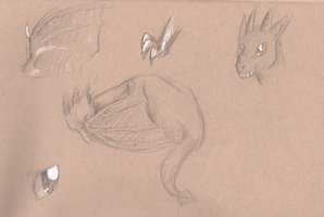 Dragon Sketches by Deercliff